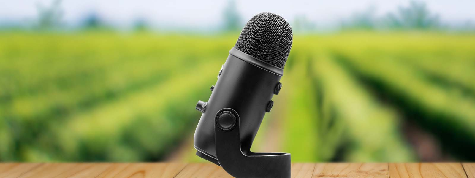 A microphone on a table in front of a field of crops | Woodruff